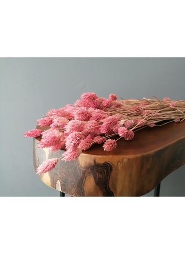Kuru Çiçek Deposu Kuru Çiçek Kuş Otu (Palaris Otu) Pembe Pembe